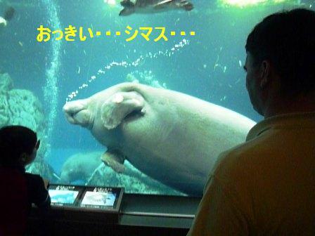 c0092643_248992.jpg