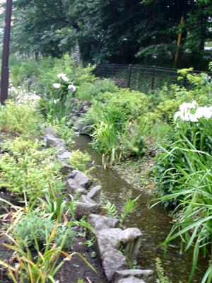 雨でも快適カモ 、遊歩道!_e0044855_1762333.jpg