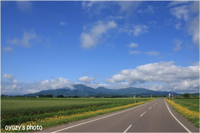 羊蹄山、ニセコ、好みは?_a0071514_1972036.jpg