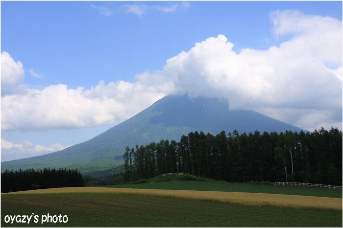 羊蹄山、ニセコ、好みは?_a0071514_1973058.jpg