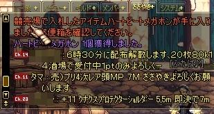 a0086020_9382460.jpg