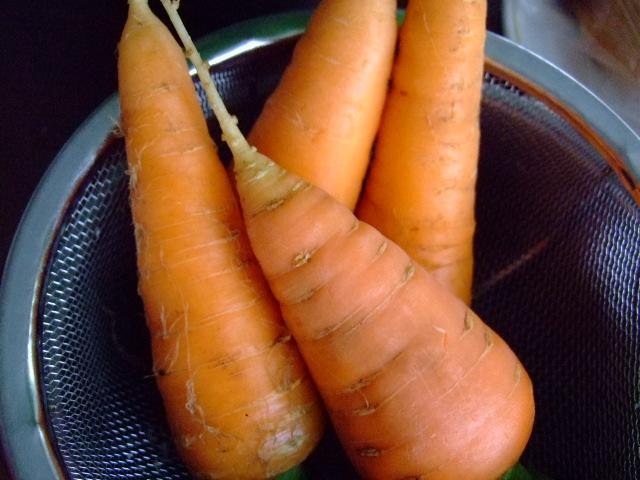 夏野菜,,,,,気分はキリギりス!_b0137932_19231540.jpg