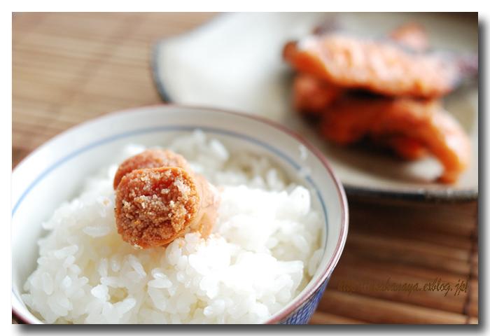 炙りタラコご飯と焼き鮭定食.......... ひとりぼっちのお昼ご飯 ☆_d0069838_18321332.jpg