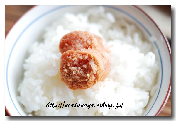 炙りタラコご飯と焼き鮭定食.......... ひとりぼっちのお昼ご飯 ☆_d0069838_1839475.jpg