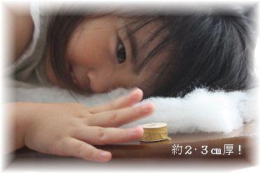 f0181052_171433.jpg
