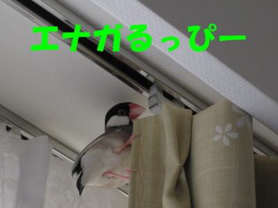 b0158061_2114386.jpg