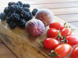 今朝の収穫_c0055363_11181488.jpg