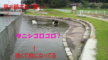c0120585_14224994.jpg