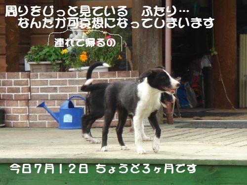 b0101991_2152843.jpg