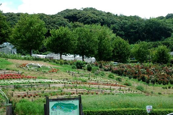 四季の郷公園_b0093754_23471793.jpg