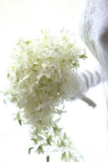 お嫁に行ったお花たち_c0137266_219485.jpg