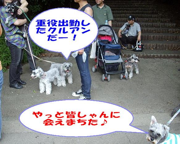 c0138198_0112166.jpg