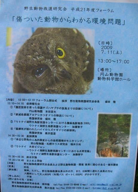 コモドオオトカゲのお食事_c0155902_1951729.jpg