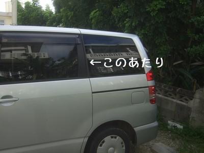 f0178416_20254718.jpg
