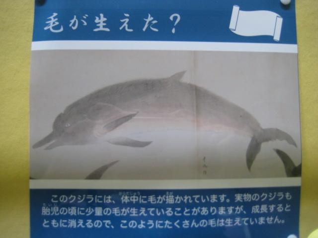 d0147727_20103626.jpg