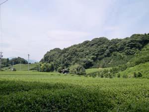 マイナスイオン★な場所へ_f0129627_15145950.jpg