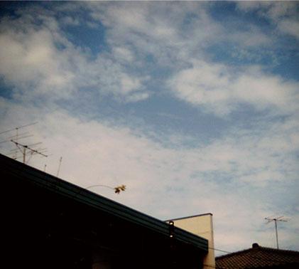 青い空!!_b0126653_21133586.jpg