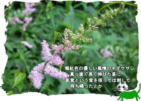 f0137096_22235245.jpg