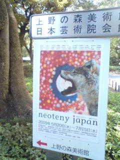 ネオテニージャパン_f0064823_1331221.jpg