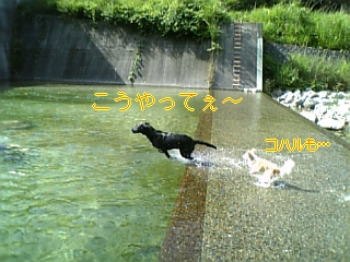 f0148927_19532680.jpg