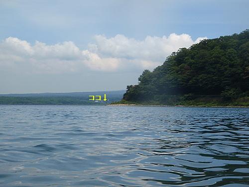 b0136381_1125135.jpg