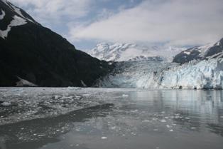 プリンスウイリアム湾氷河ツアー_b0135948_8502099.jpg
