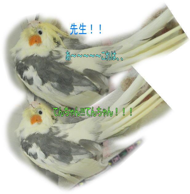 f0082367_14283969.jpg