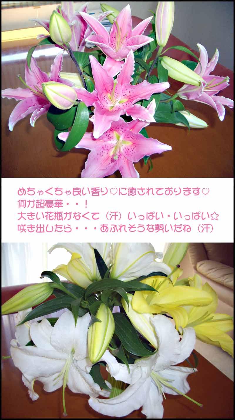 豪華絢爛っ↑_f0119369_16164639.jpg