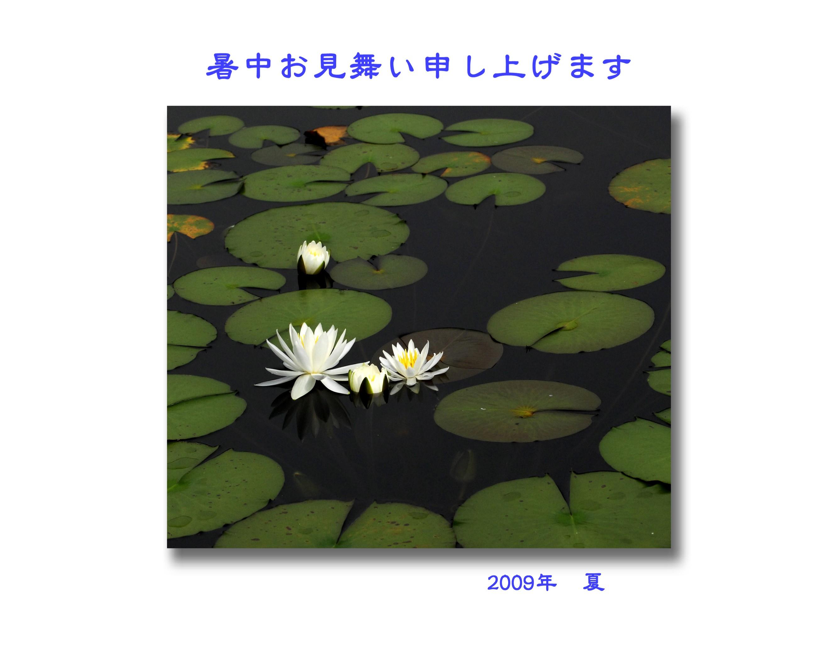 f0181998_16211119.jpg