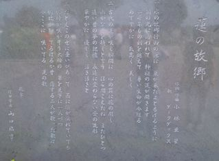 f0144003_1218373.jpg