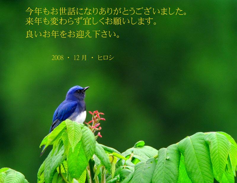 f0181821_17193981.jpg