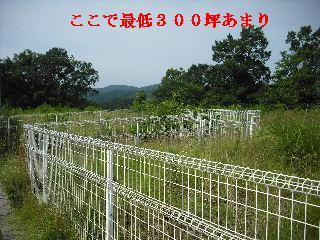現場調査・諸々準備_f0031037_1895358.jpg