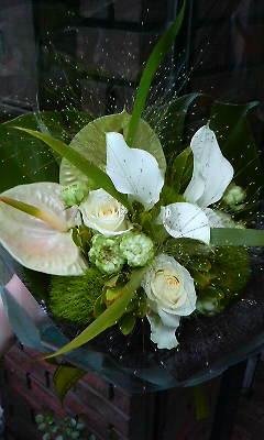 トロピカル花材_c0137266_2148202.jpg