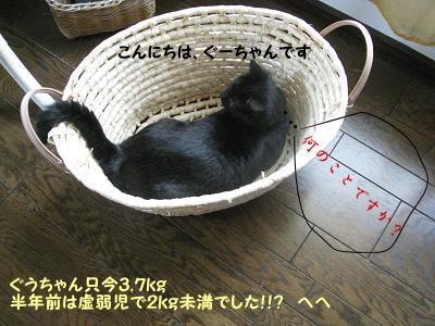b0084186_18151364.jpg
