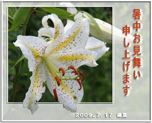 f0164592_9331514.jpg