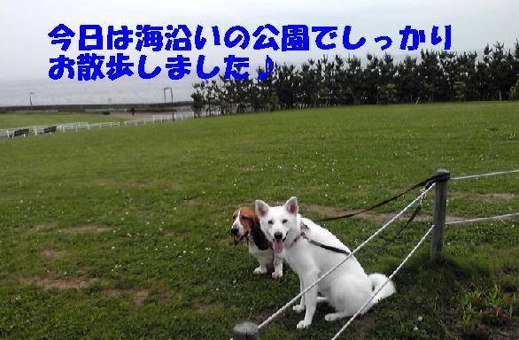 f0121712_142132.jpg