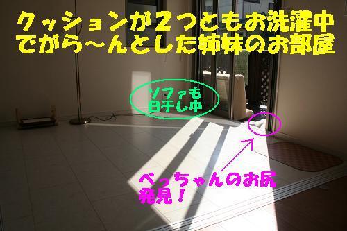 f0121712_144172.jpg