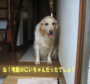 b0008217_10585354.jpg