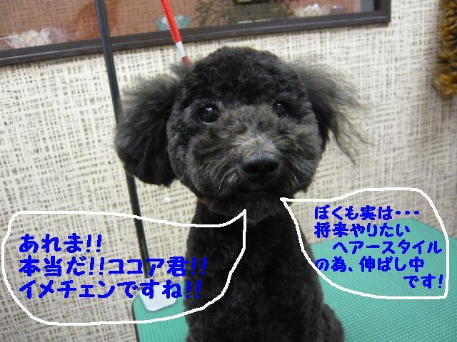 チェンジ!!_b0130018_1919459.jpg