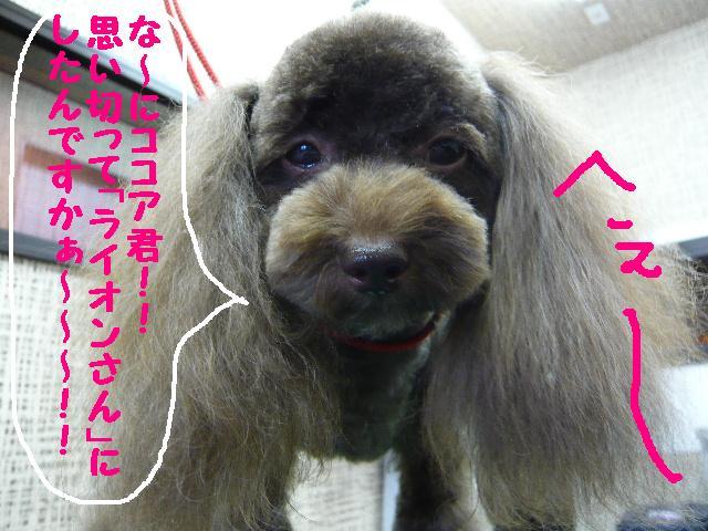 チェンジ!!_b0130018_1919536.jpg