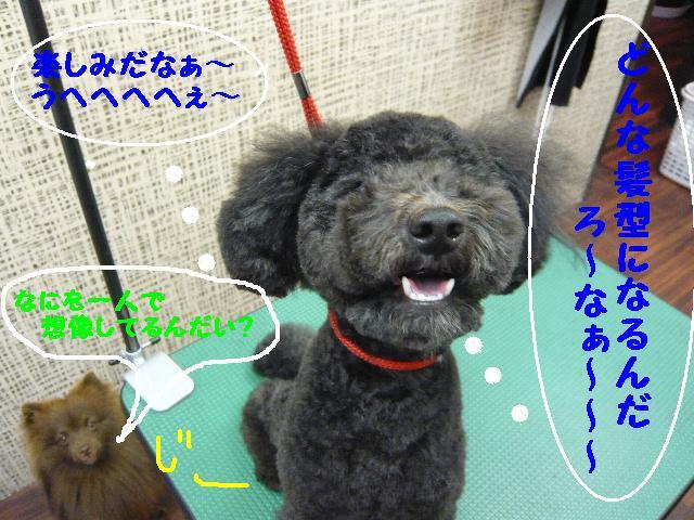 チェンジ!!_b0130018_19201570.jpg