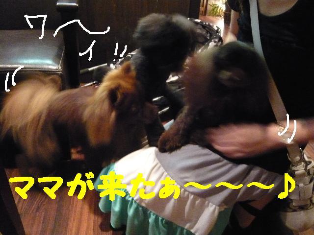 チェンジ!!_b0130018_19202215.jpg