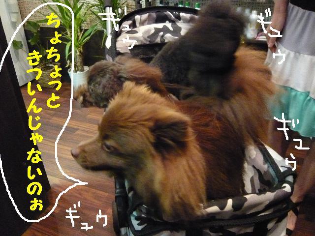 チェンジ!!_b0130018_19203452.jpg