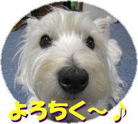 f0084422_1192143.jpg