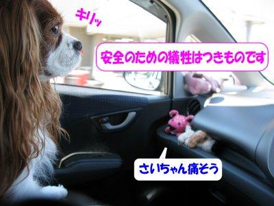 b0185323_16412066.jpg