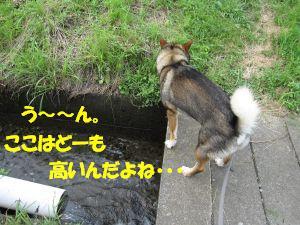 f0143123_20115820.jpg