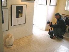 中川こうじ写真展「のらねこ。」は終了いたしました。_f0138928_1840137.jpg