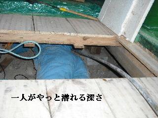 防虫作業・浴室関連作業_f0031037_19451574.jpg