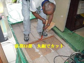 防虫作業・浴室関連作業_f0031037_1945256.jpg