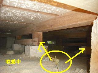 防虫作業・浴室関連作業_f0031037_19454581.jpg